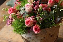 fiori freschi: composizioni in vaso