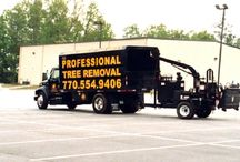 North American Tree Service / Professional Tree Removal   / by North American Tree Service