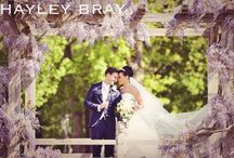 Photos I have taken / Selection of images taken at Hayley Bray Photography Ltd