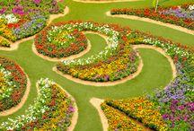 dywany kwiatowe