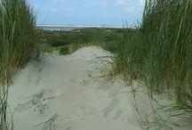North sea - Borkum