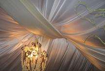 Wedding Ideas / by Celebration Party