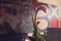 kvetinac