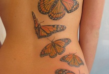 tattoos- because I like to look at them! / by Barb Mikielski