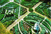 Amazing Gardens / by feral gardener