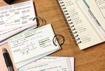 Organisation for students