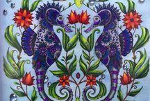 Johanna Basford / Coloring books