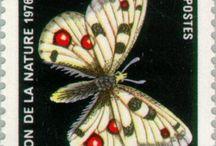 Francobolli lepidotteri
