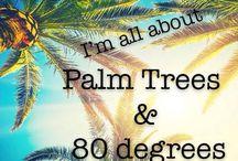 Caribbean it is!