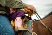 Cowboys&Cowgirls&Horses / Horse stuff / by Shanah Atkinson