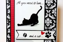 All you need is love... and a cat