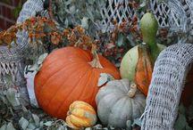 déco d'automne......