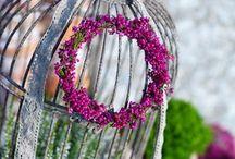 Garden ideas and decoration