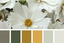 Color Love / Inspiring colors and palettes
