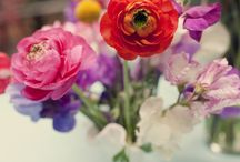 I'm giving in: The Wedding Board / by Katie Watkins