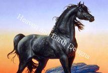 Horses / by Laurenn Lindsay