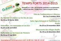 Temps Forts 2014-2015 / Participer à des événements culturels, partir à la découverte de la #Guinée, #VoyageGuinee, #CutureGuinee.