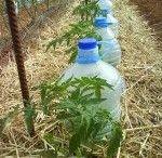 irrigation solaire