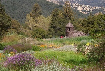 Santa Barbara's Parks & Gardens / In honor of National Public Garden's Month during the month of May, we've put together this board to give you inspriation and tips for starting your own! / by Santa Barbara