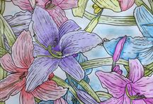 Colored Pencils / All about colored pencils for your Adult Coloring pastime