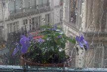 Βροχερές Μέρες