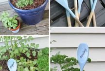 Garden ideas! / by Sarah Telgenhof