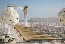 Wedding / by Ashley Baber