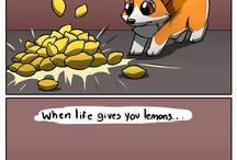 Ichabod The Optymistic Canine
