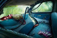 Feshun / by Katie Coetzee