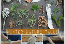 Bringing Nature Inside