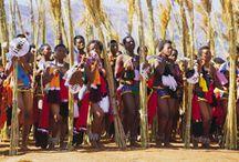 MELMOTH, KwaZulu-Natal, SOUTH AFRICA / Zulluland Melmoth Farming Sugarcane,Avocado