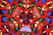 FLORA & FAUNA / Nature patterns and flowers <3