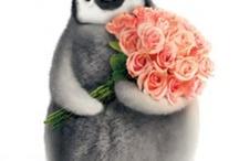 πιγκουίνοι και πιγκουινακια