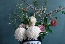 Oursin Fleurs - portfolio