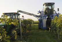Winery Machinery / Check out the machines that make your beloved Tassel Ridge Wines!