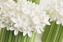 Flower Cupcakes / All things flowery!