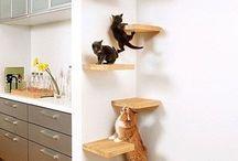 CAT TOWER diy