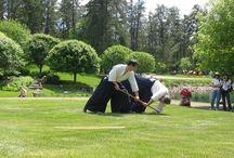 aikido practice outdoors / aikido practice outdoors