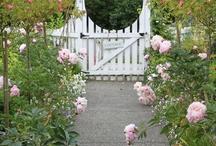 Art | Garden