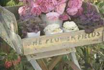 Everything Flowers / Pretty Flowers