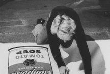 Objecte i Art: Andy Warhol