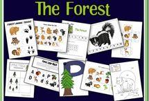 Animals Preschool ideas / by Debbie Jackson