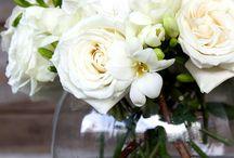 Floral / by Stephanie Sachel