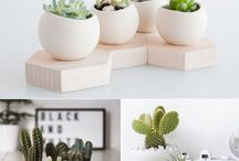 plants & things