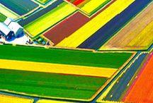 VV 32. Hollandia