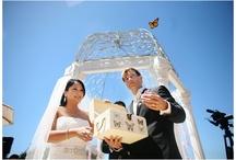 Wedding Activities & Entertainment
