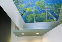 Sky Ceiling Panels / Acoustic ceiling tiles and backlit LED sky ceiling panels are available from Artificial Sky and never cease to make any hospital, airport, lobby, waiting room, dental office, restaurant, hotel, office or basement a more soothing and relaxing place to stay in. Using proprietary image capturing software, Artificial Sky is capable of capturing the largest images on Earth. Our images are 20-100 times larger than any competitor capable of spanning entire ceilings in ultra high definition.