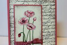 Poppy cards