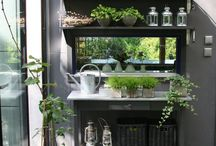Outdoor Living / by Barbara Wilson