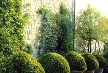 Cavendish Garden